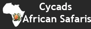Cycads African Safaris